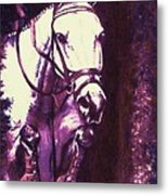 Horse Painting Jumper No Faults Purple Metal Print