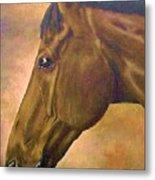 horse portraint PRINCETON pastel colors Metal Print