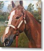 Red Dun Horse - Reds Done Dancin By Marilyn Nolan-johnson Metal Print