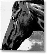 horse portrait PRINCETON black and white Metal Print
