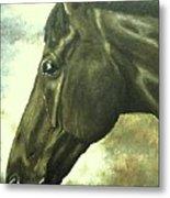 horse portrait PRINCETON bright light Metal Print