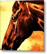horse portrait PRINCETON brown tones Metal Print