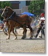 Horse Pull Team A Metal Print