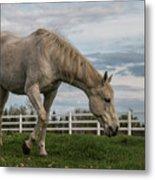 Horses #1 Metal Print
