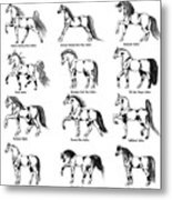 Horse Sketch Composite Metal Print