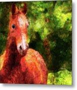 Horse Study #2 Metal Print