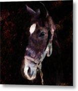 Horse Study #4 Metal Print
