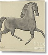 Horse Weather Vane Metal Print