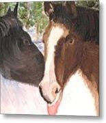Horse Whisperer Metal Print