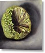 Horseapple Metal Print