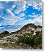 Horseneck Beach Ma. 2 Metal Print