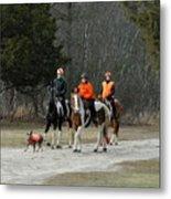 Horses 6 Metal Print