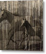 Horses Abstract Mare And Foal Metal Print