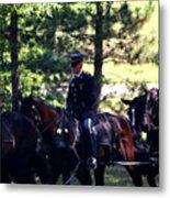 Horses At Arlington Cemetery Metal Print