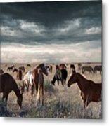 Horses Forever Metal Print