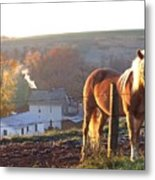 Horses In Autumn Frosty Sunrise Metal Print