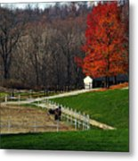 Horses In Autumn Metal Print