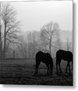 Horses In Field B And W Metal Print