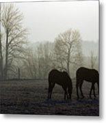 Horses In Field Metal Print