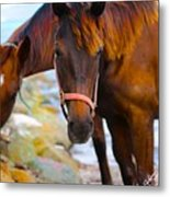 Horses On Jost  Metal Print
