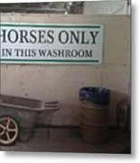 Horses Only Metal Print