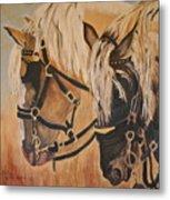 Horseshoe And Dan Metal Print