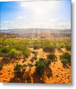 Horseshoe Bend Desert Metal Print