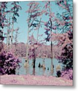 Horseshoe Conservation Area Infrared Metal Print
