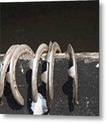 Horseshoes Metal Print by Danielle Allard