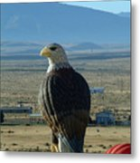 Hot Air Eagle Metal Print