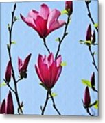 Hot Pink Magnolias Metal Print