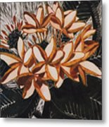 Hothouse Flowers Metal Print