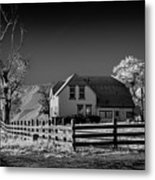 House And Cottonwoods Metal Print