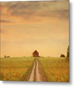 House At The End Of A Track In A Poppy Field Metal Print