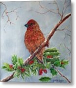 House Finch In Winter Metal Print