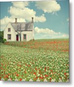 House In The Countryside Metal Print