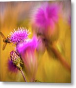 Hoverfly Thistle #g7 Metal Print
