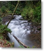 How The River Flows Metal Print