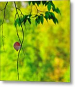 How To Catch A Tree Metal Print