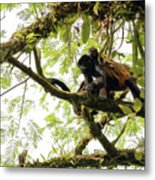 Howler Mother And Child Metal Print