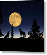 Howling At The Moon Metal Print
