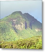 Huahine Forest And Mountaintop Metal Print