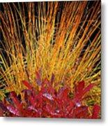 Huckleberry Glow Metal Print