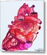 Human Heart Pa Metal Print
