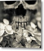 Human Skull Among Flowers Metal Print