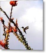 Hummer Likes Red Metal Print