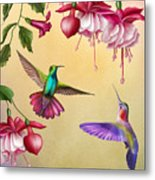 Humming Birds And Fuchsia-jp2784 Metal Print