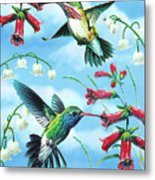 Humming Birds Metal Print by JQ Licensing
