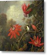 Hummingbird And Passionflowers Metal Print