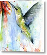 Hummingbird And Red Flower Watercolor Metal Print
